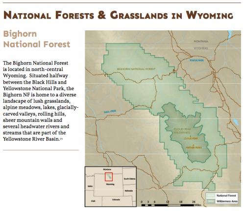 BighornNationalForest.png